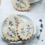 teacookies1056croptite72WMsquare