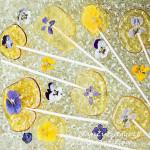 pansy-violetpops282croptitesquare72WM_edited-3