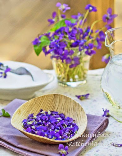 Homemade Violet Syrup–Made with Violets from Spring Gardens & Woods