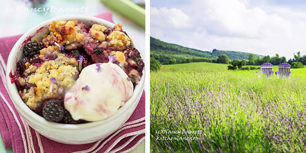 blackberry_cobbler_lavender_farm